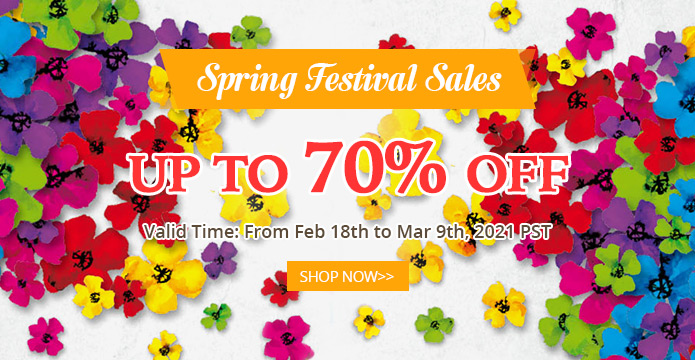 Spring Festival Sales UP TO 70% OFF